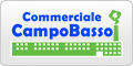www.commercialecampobasso.it