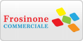 www.commercialefrosinone.it