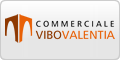 www.commercialevibovalentia.it